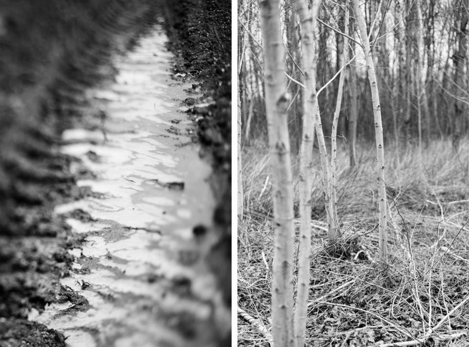 winterwood_mlg_photography-19
