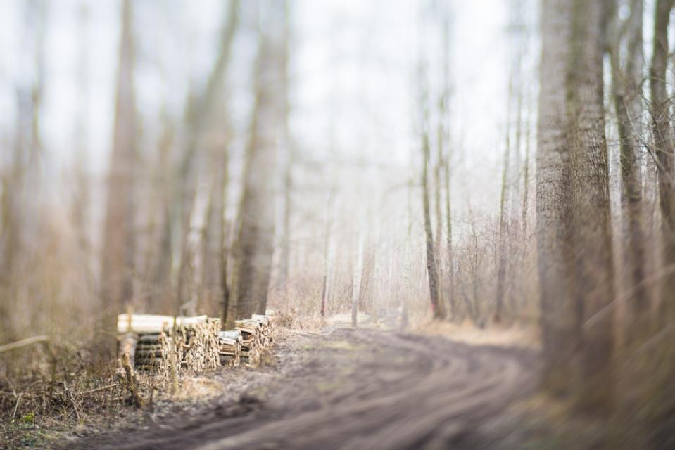 winterwood_mlg_photography-8